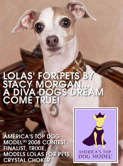 Links - Lola's for Pets